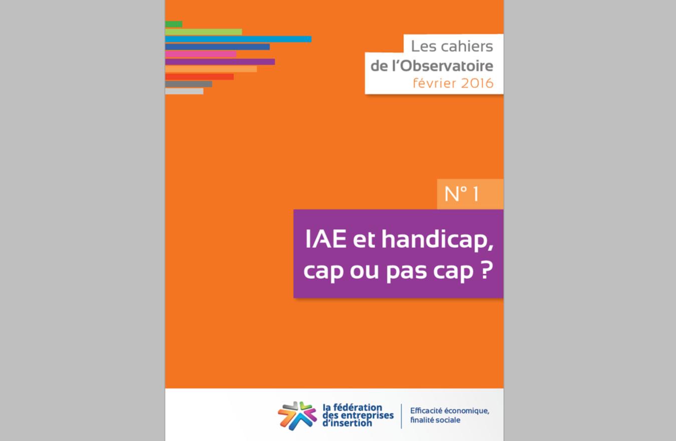 Observatoire n°1 : IAE - Handicap